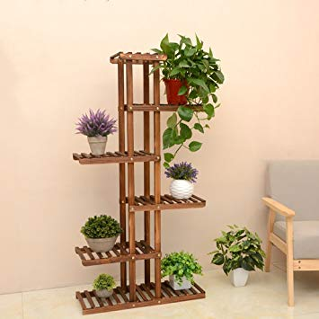 etagere plante